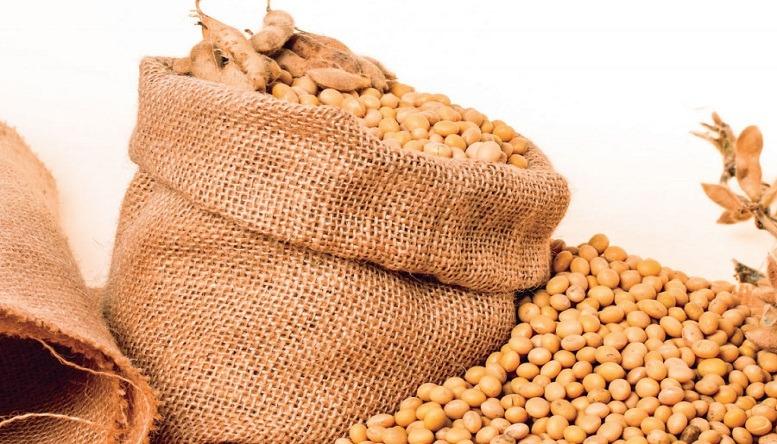 Exportación de la soya