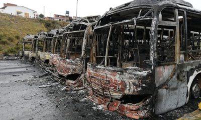 Pumakataris quemados