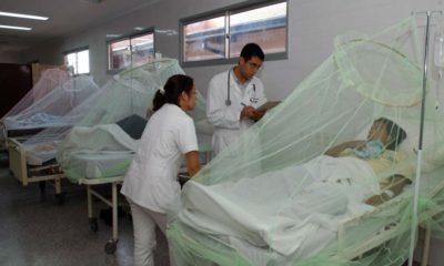Pandemia dengue