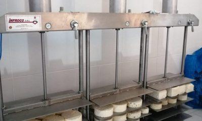 Producción lechera