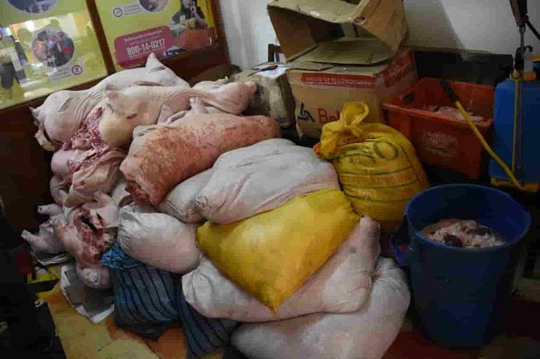 Cerdo decomisado