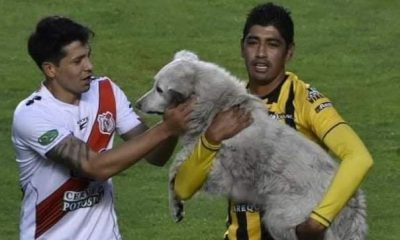 Raúl Castro adopta a perro Cachito