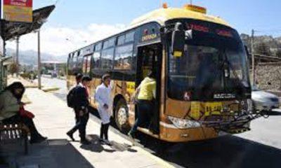 Fumigado de buses