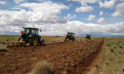 Servicio Departamental Agropecuario