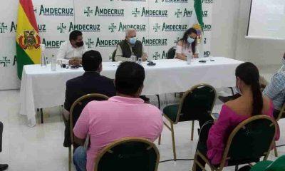Amdecruz