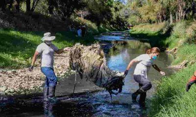 Limpieza del río Rocha