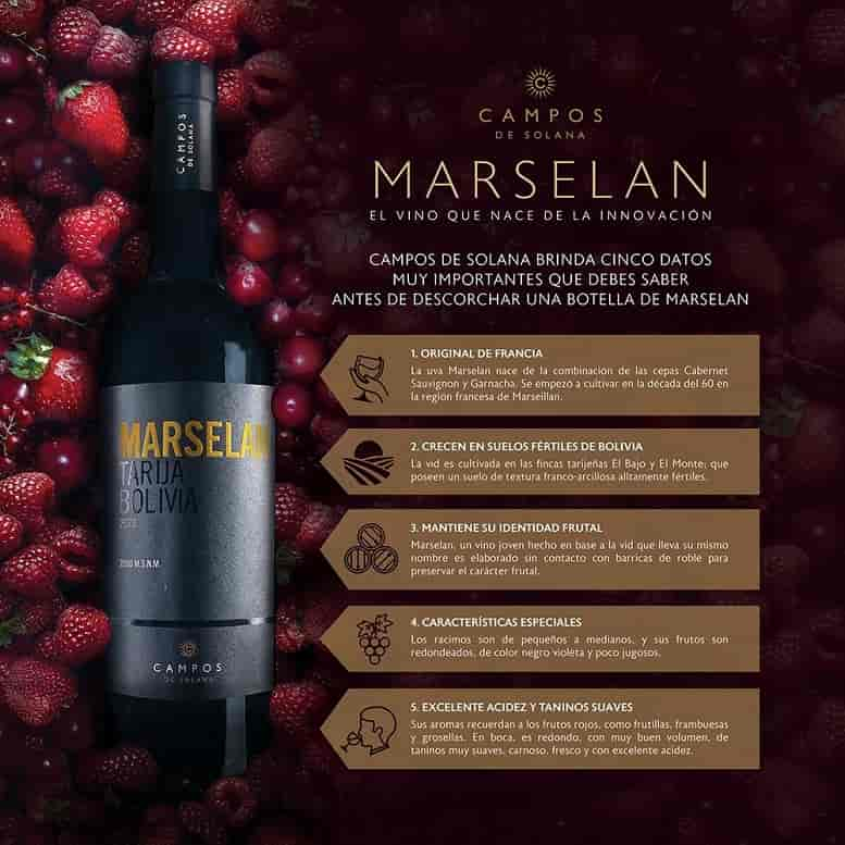 vino_Marselan