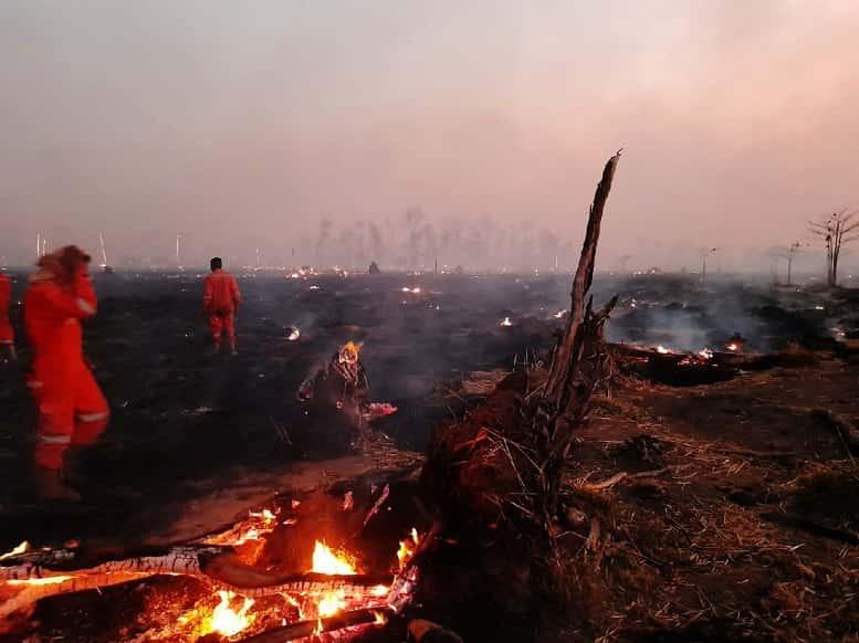 Incendios_Santa_Cruz