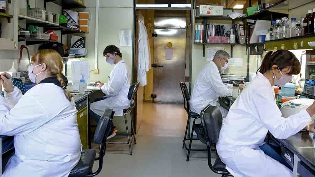 Vacuna Argentina CoroVaxG.3